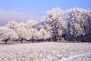 Winter001