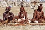 Himba793