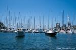 Yachten in Rushcutters Bay - Sydney