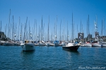 Yachten in Rushcutters Bay - Sydney