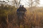 Elefantensafari durch das Grasland des Parks