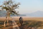 Auf dem Rücken eines Elefanten sieht die Welt noch einmal ganz anders aus
