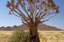 Landschaft_Namibia_DSC05082