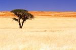 Namibia252