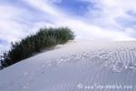 White_Sands001