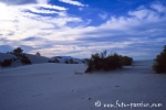 White_Sands033