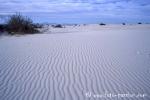 White_Sands041