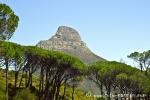Kapstadt014