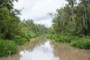 Der Fluss wird immer schmaler, je weiter wir in den Regenwald vordringen