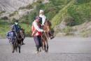 Mit Pferden werden die Touristen zum Kraterrand des Bromo gebracht