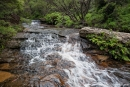 Zufluss der Wentworth Falls - Blue Mountains National Park