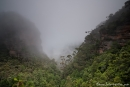 Dichter Nebel liegt über den Blue Mountains