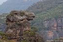 Sieht aus wie ein Drachenkopf, Cahills Lookout - Blue Mountains NP