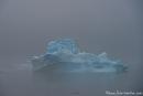 Nebel umhüllt die Eisberge