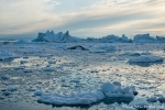 Die in der Bucht treibenden Eisberge bieten einen gigantischen Anblick