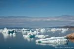 Eisberge der Diskobucht