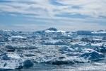 Eisberge am Kangia-Fjord