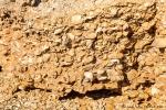 Der Boden besteht nur aus gepressten Muscheln