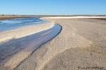 Die Shark Bay hat noch mehr Muschelstrände