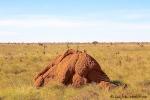 Mehr als ein paar rote Termitenhügel hat die Landschaft nicht zu bieten.