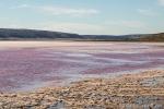 Hutt Lagoon - der pinke See