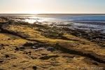 Küste von Port Hedland