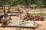 Der Multikulturelle Friedhof ist anders, als wir es gewohnt sind.