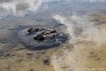 Stromatolithen am Lake Thetis
