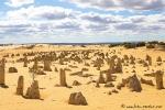 Bizarr geformte Kalksteinsäulen im Nambung NP