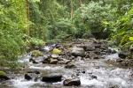 Im Dschungel von Bosque de Paz