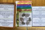 Regeln, wohin man sich wendet - Esquinas Rainforest Lodge