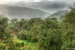 Ausblick von der Paraiso Quetzal Lodge