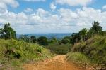 Im Hochland des Braulio Carrillo NP