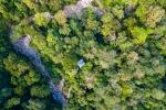 Unsere Regenwaldidylle von Oben