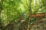 Echtes Regenwaldfeeling