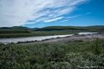 Landschaft wie im Allgäu - Kangerlussuaq