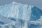 Frisch abgebrochen - Eisberg im Kangia-Fjord