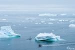 Eisberge in der Diskobucht
