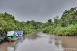 Boote bringen die Besucher in den Regenwald