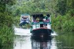 Mit einem Klotok (Hausboot) fahren wir in den Tanjung Puting Nationalpark