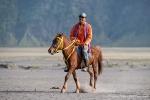 Reiter und Pferd warten auf Touristen