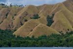Sanfte grüne Hügel an der Küste von Flores