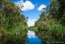 Traumhafte Idylle mitten im Regenwald