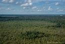 Der Regenwald von Borneo aus der Luft
