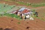 Gemüseanbau am Puncak Pass