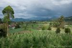 Das Umland von Bandung