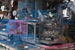 Hier ist es das reinste Gruselkabinett - Tier- und Vogelmarkt Yogyakarta