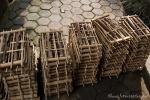 Bambusinstrumente - Angklung genannt
