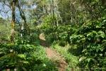 Wanderweg in Sanda