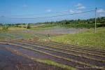 Reisterrasse kurz vor der Bepflanzung
